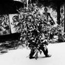 薄井大還 写真展「天と地の境で-ダライ・ラマの住む頂き-」