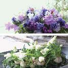 花綵 -HANAZUNA- それぞれの花想い