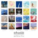amu design 18期写真展「ohaco」