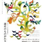 京都dddギャラリー・京都市立芸術大学 ビジュアル・デザイン研究室 共催展 グラフィックで科学を学ぼう 進化のものがたり展