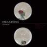 「PALINGENESIA」 Estelle Delesalle KG+ KYOTOGRAPHIE Satellite Event