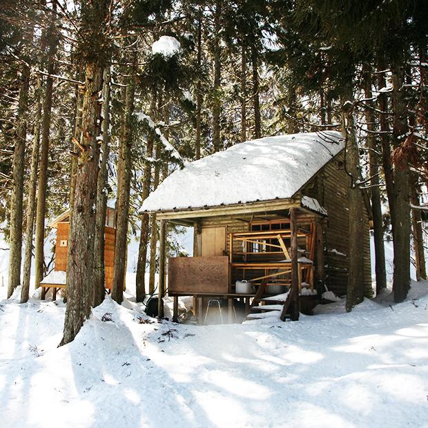 winter_oomi